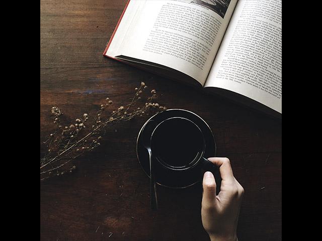 Programa de la Fiesta del Libro y la Rosa. 2019 Día 2