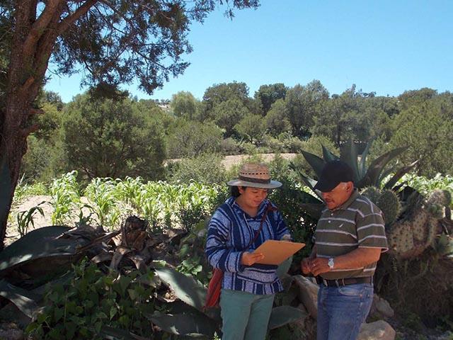 La ENES Morelia ofrecerá la licenciatura en Ciencias Agroforestales
