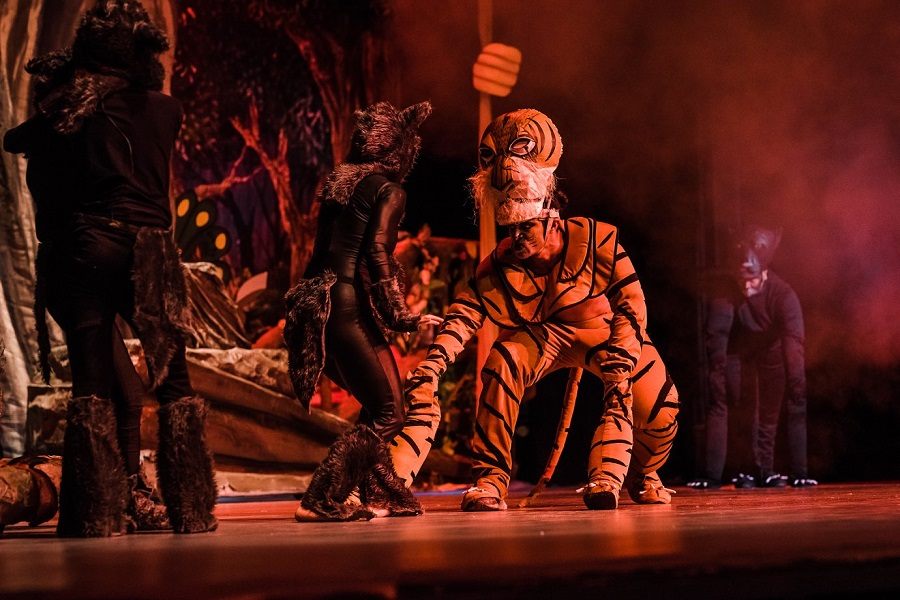 Chacachachán Teatro Mágico brinda espectáculos de teatro musical, enfocados en la audiencia infantil