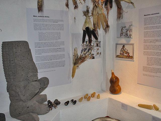 Inauguran el Museo del Maíz en Sénguio, Michoacán.