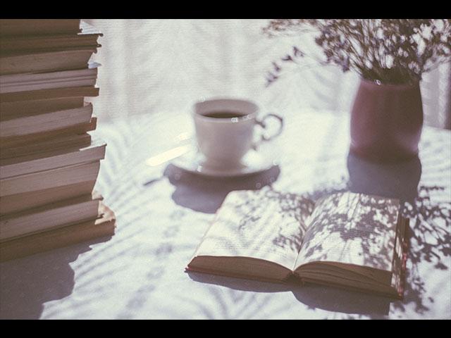 Un año con muchas actividades literarias: Secum