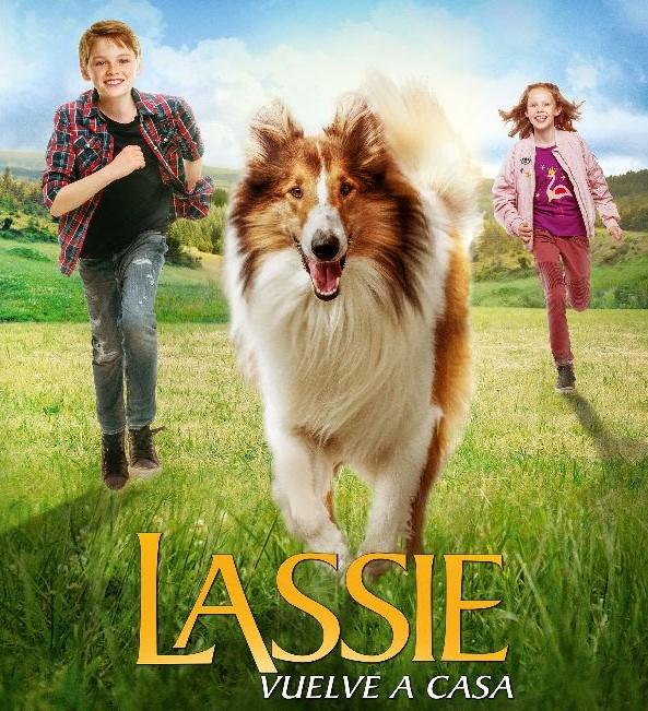 Anuncian regreso de Lassie